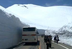 大谷の雪壁