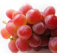 葡萄の品種