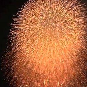 田原祭り 花火大会