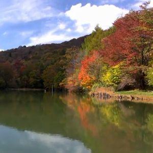 茶臼山高原 紅葉