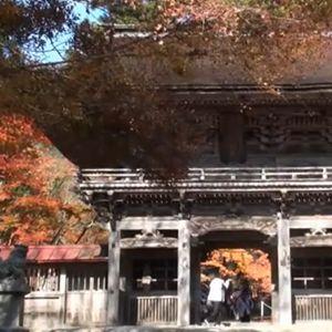 大矢田神社 モミジ谷 紅葉