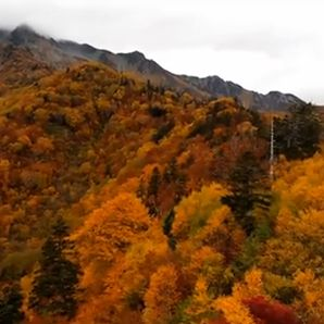 黒部渓谷の紅葉