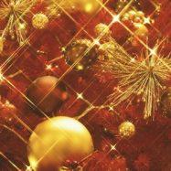 クリスマスプレゼント、女性が選ぶ人気ペアネックレス・大人デザイン
