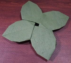 あじさいの葉っぱの部分